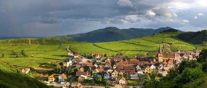 French wine regions:: Alsace near Germany, home of many top restaurants top wines