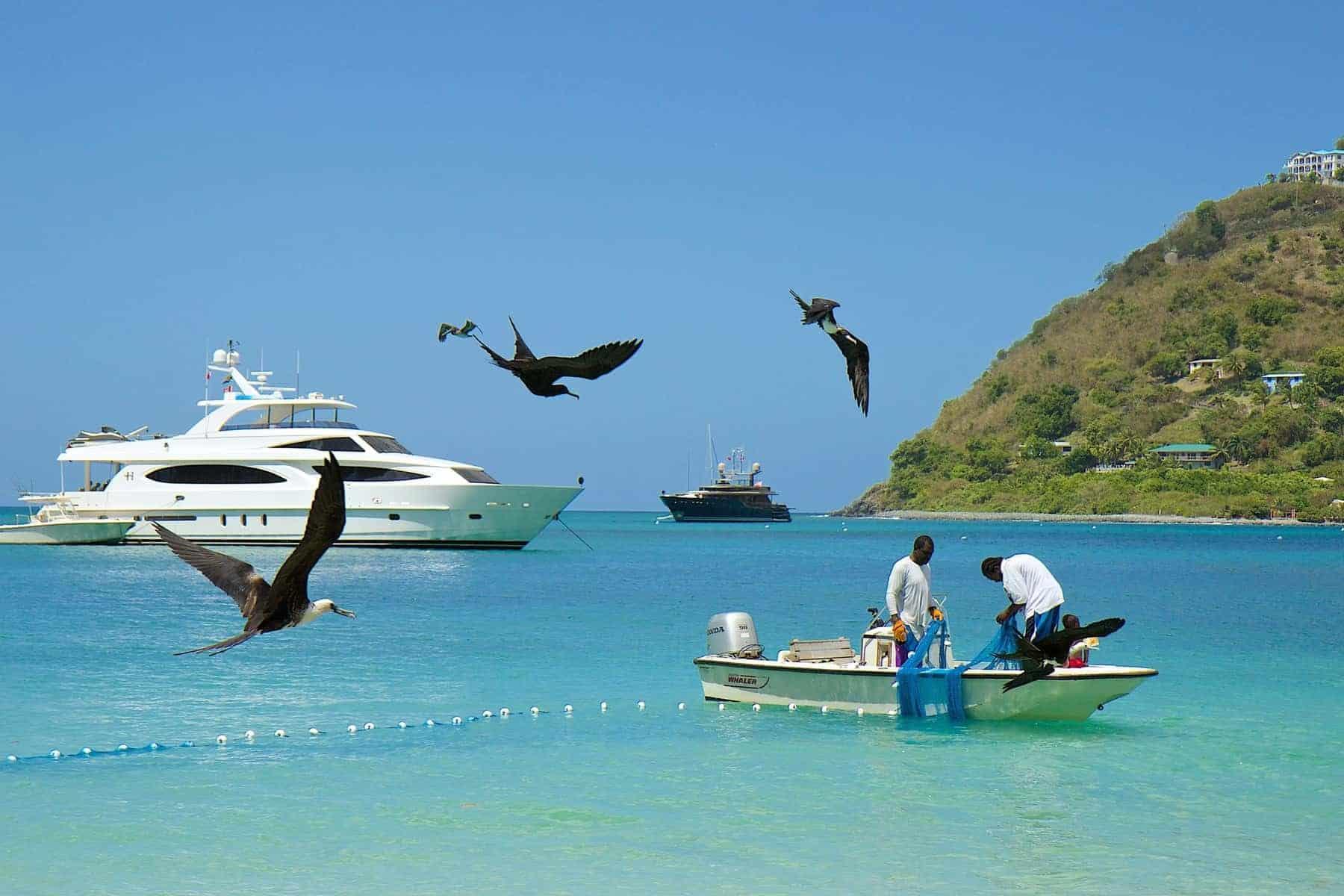 Fishermen, birds and boats in Doctor's cove bay, Tortola, British Virgin islands