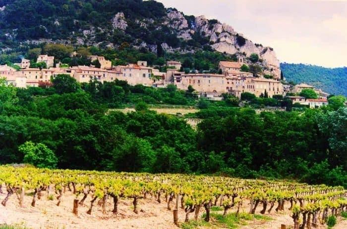 Cotes-du Rhone-Village-Seguret-wine yards
