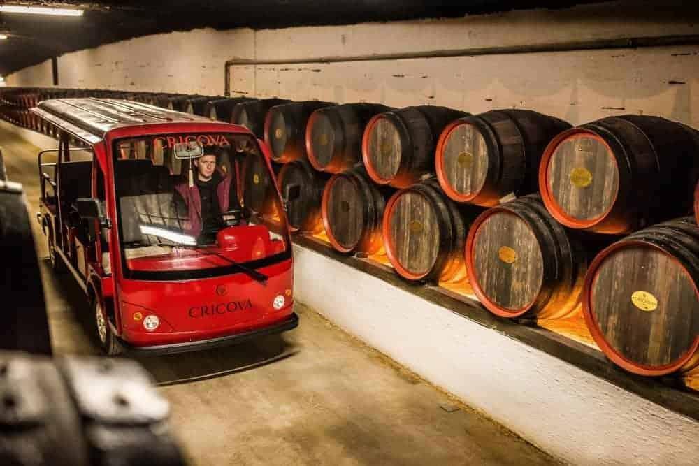 wine trips in Moldova to the Cricova museum