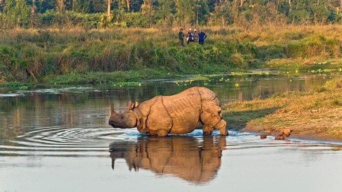 Chitwan-National-Park-Nepal