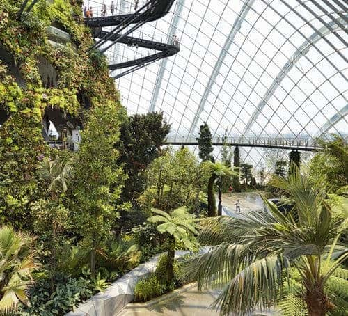 Singapore, garden-by-the-bay-flower-dome