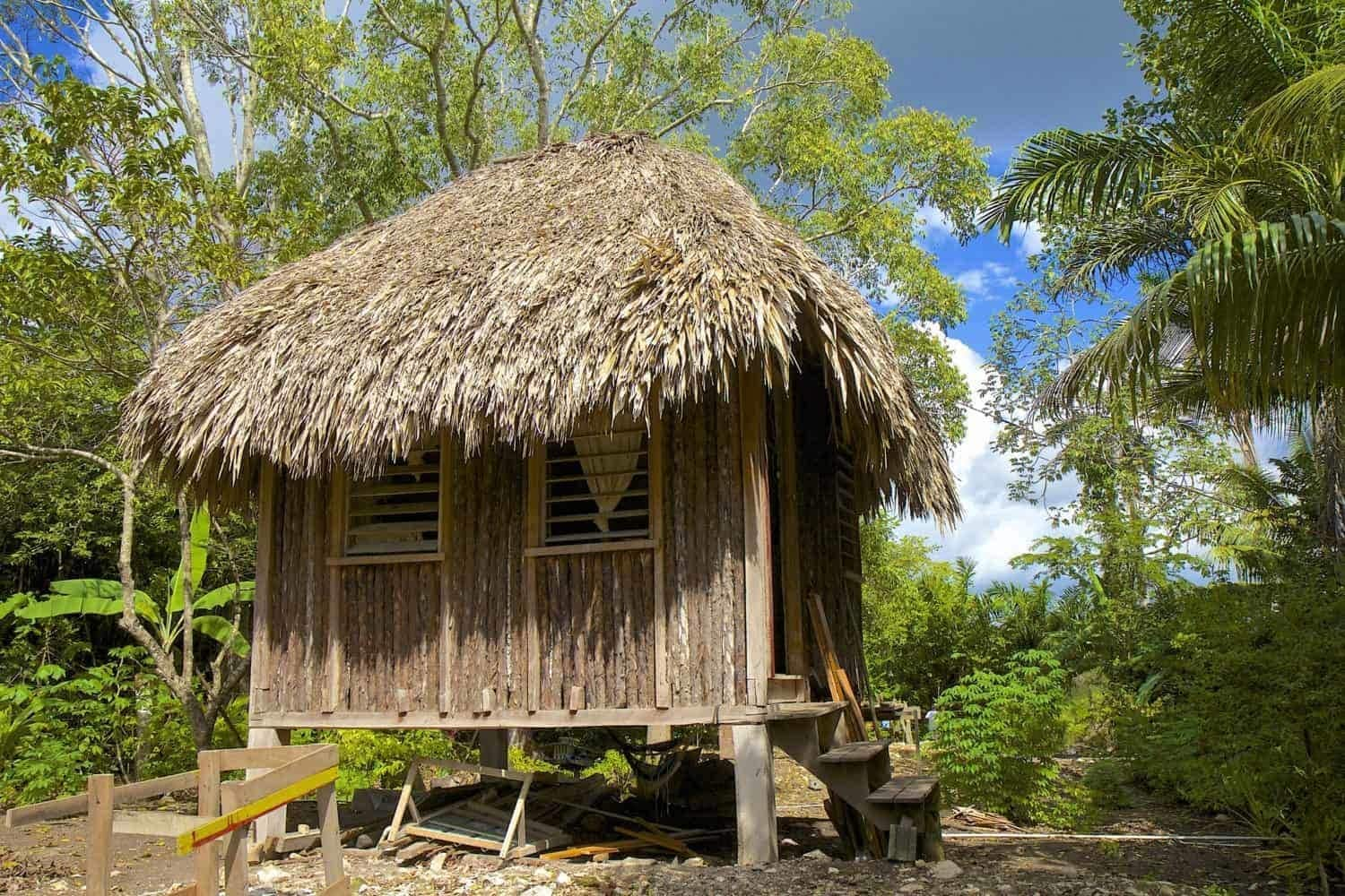 Traditional hut on Mayan site of Altun Ha in Belize, CaribbeanTraditional hut on Mayan site of Altun Ha in Belize, Caribbean