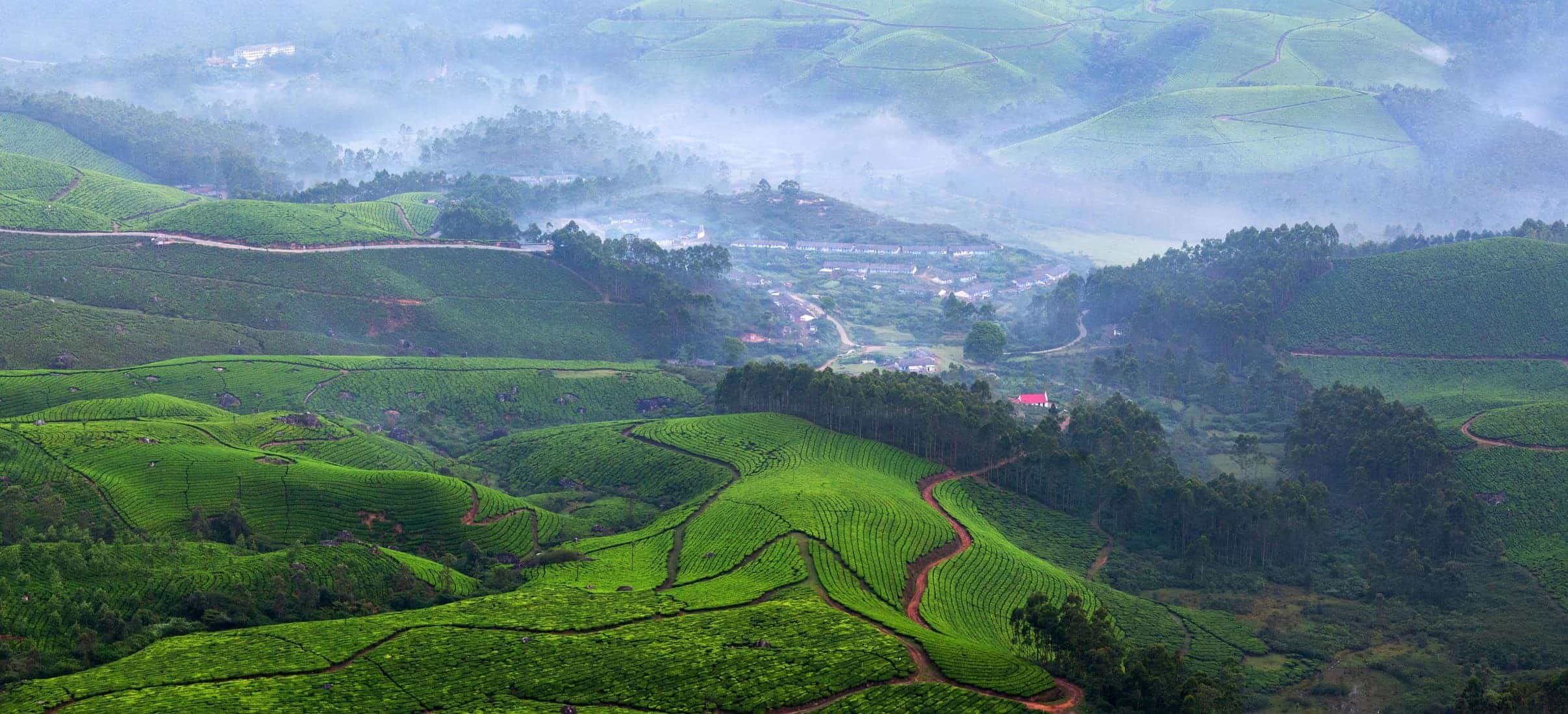 Panorama of tea plantations in Munnar, Kerala, South India. It is situated at around 1,600 metres above sea level in the Western Ghats range of mountains.