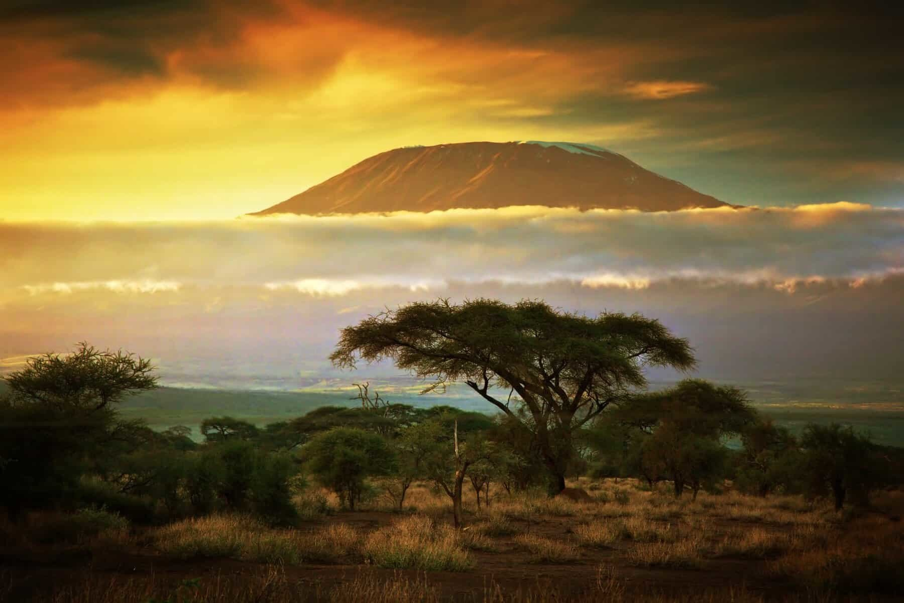 Mount Kilimanjaro and clouds line at sunset, view from savanna landscape in Amboseli, Kenya, Africa