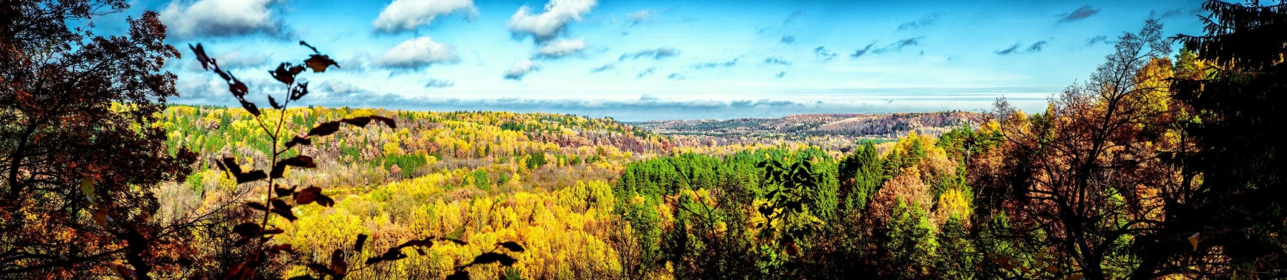 Picturesque panoramic view of autumn landscape in Sigulda. Latvia