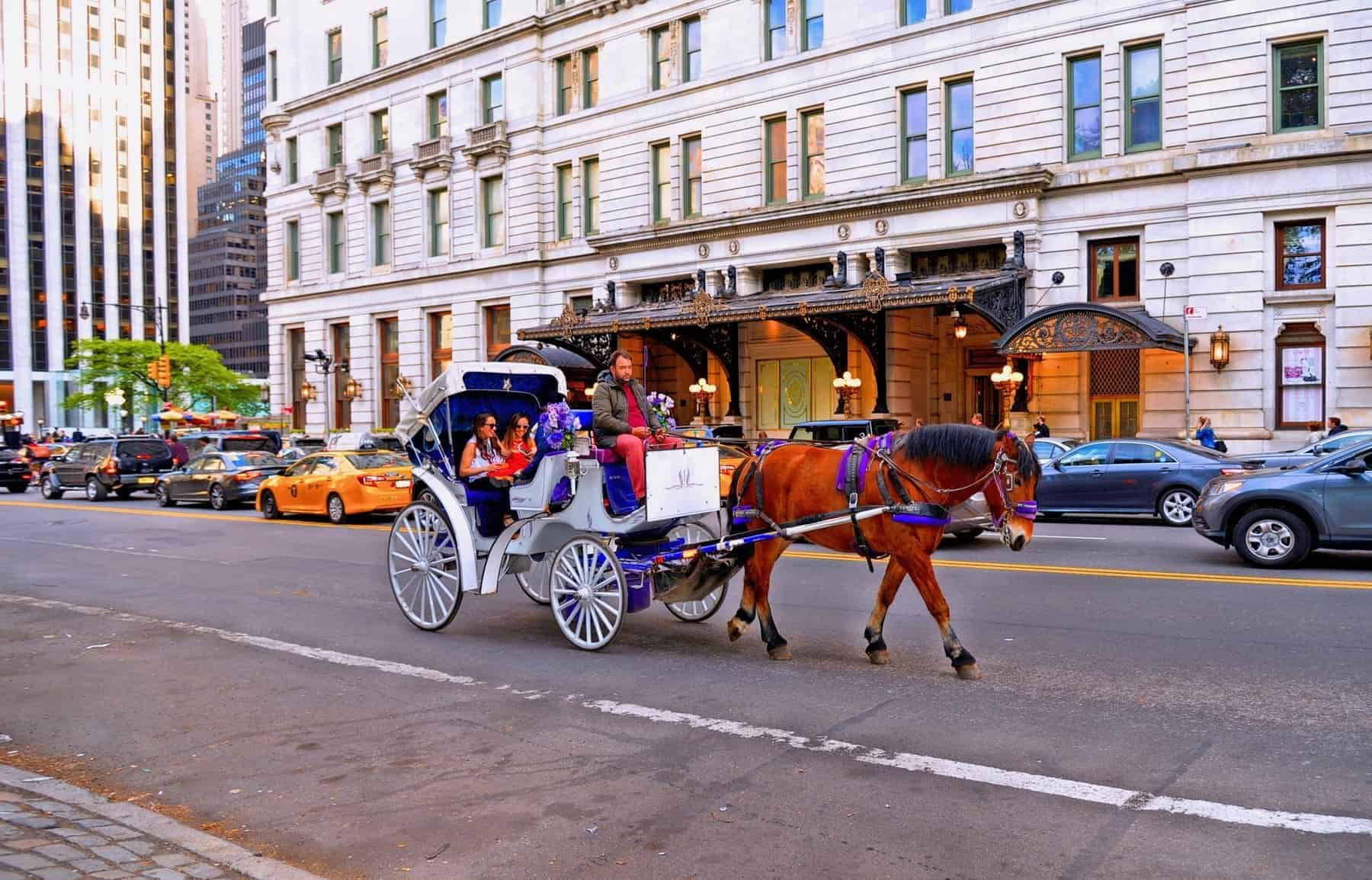 Horse carriage at the Central park in front Plaza Hotel in New York, the most picturesque and romantic ways to see the Central Park. Manhattan