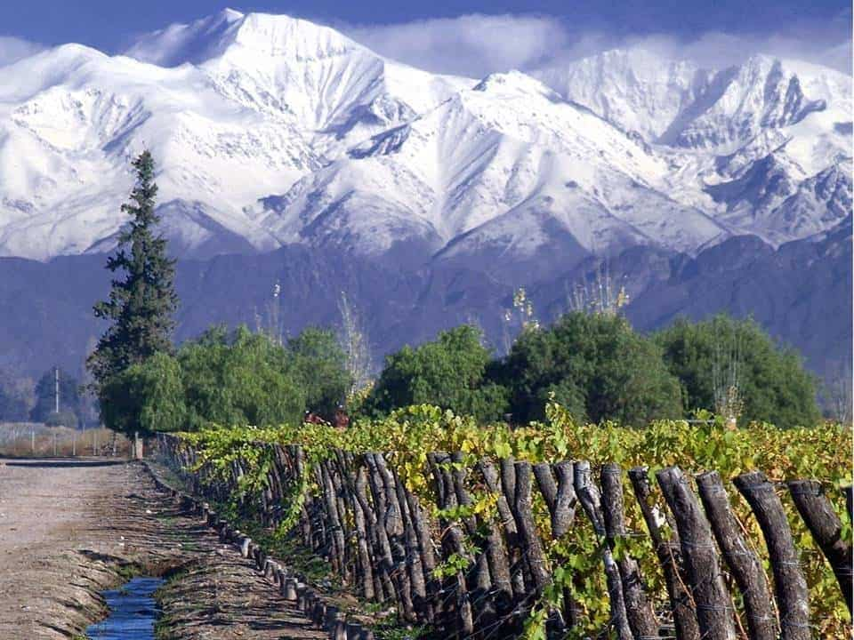 Maipo Valley winery