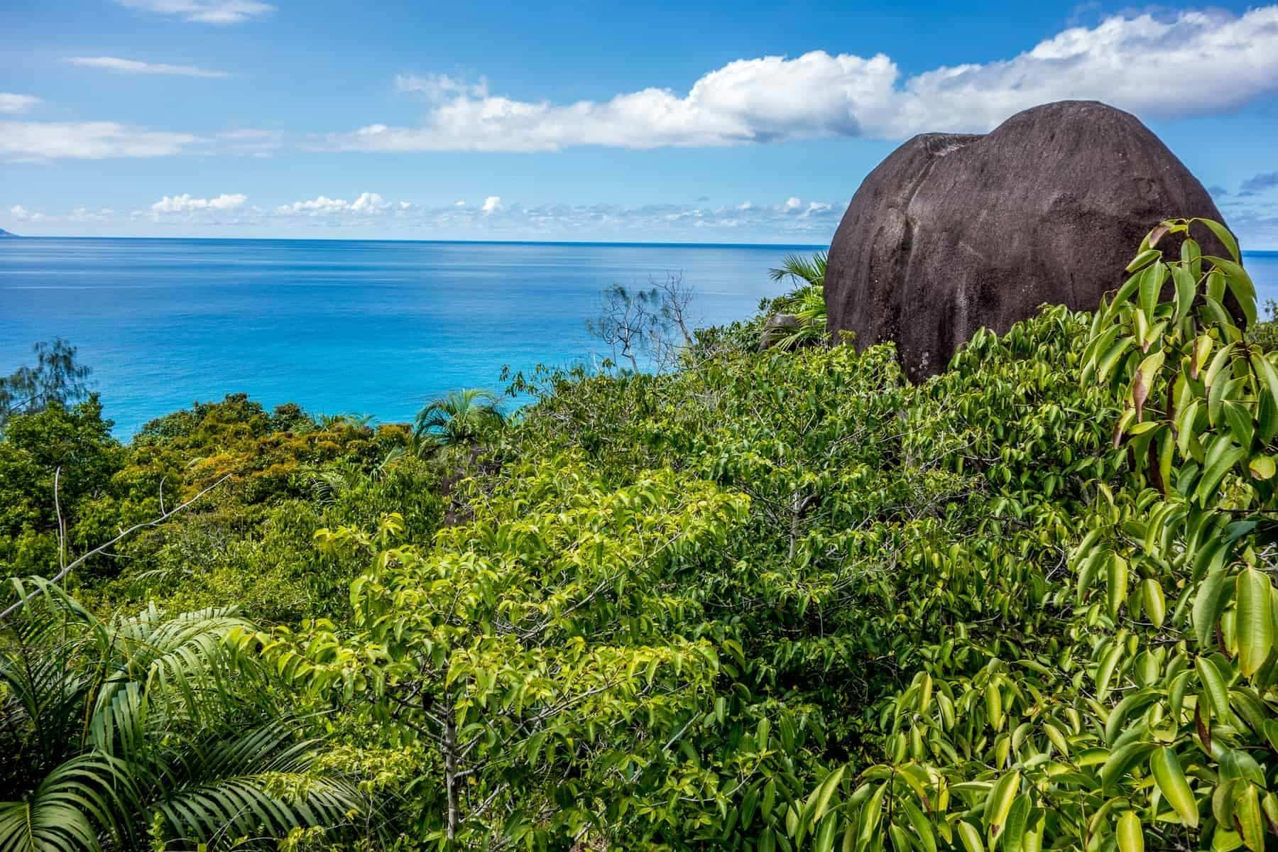 Morne Seychellois National Park in Mahe Seychelles main island