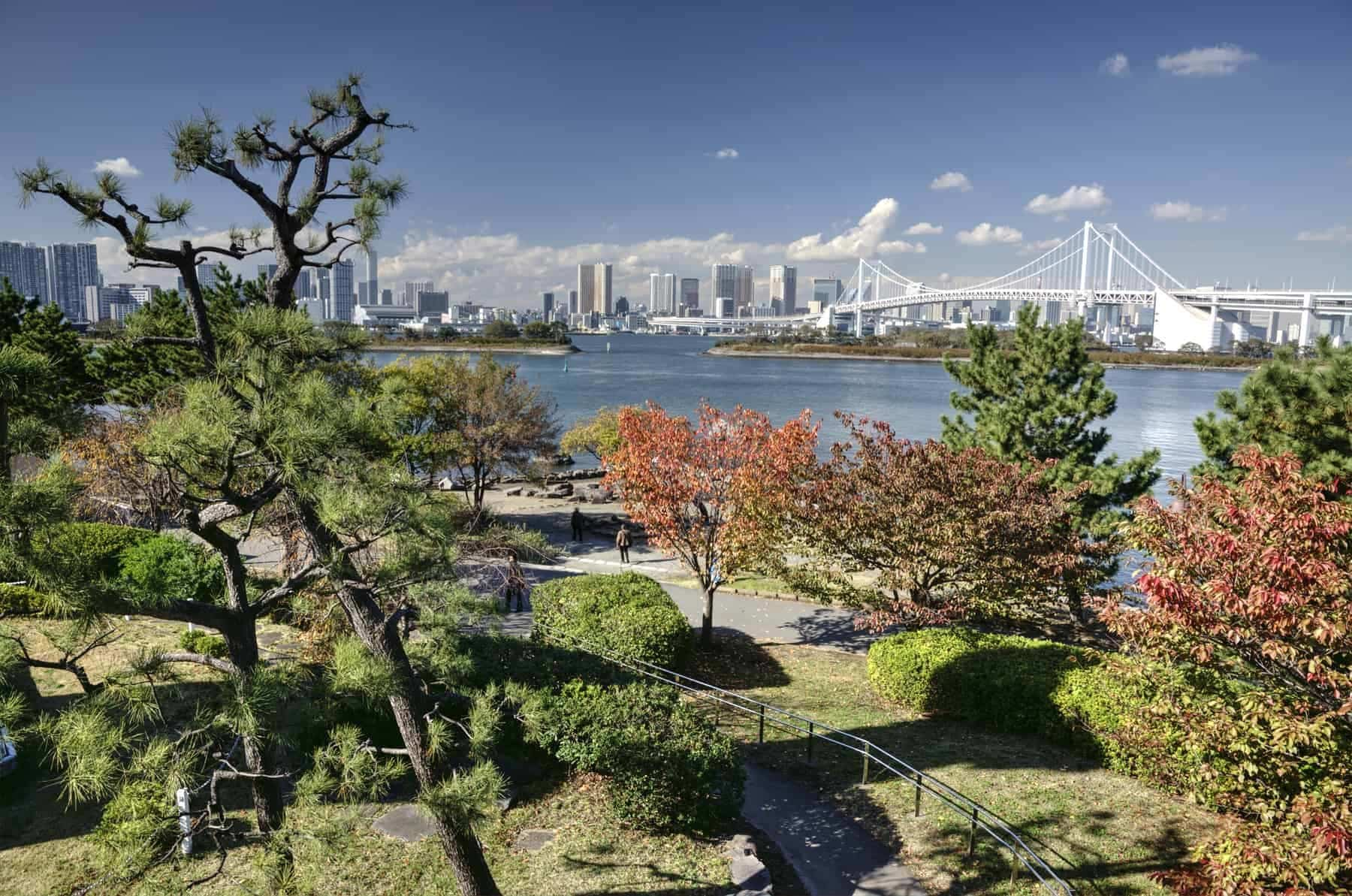 Autumn in hidden park in Tokyo Bay Japan with view on skyscrapers and bridge on background during nice sunny day.
