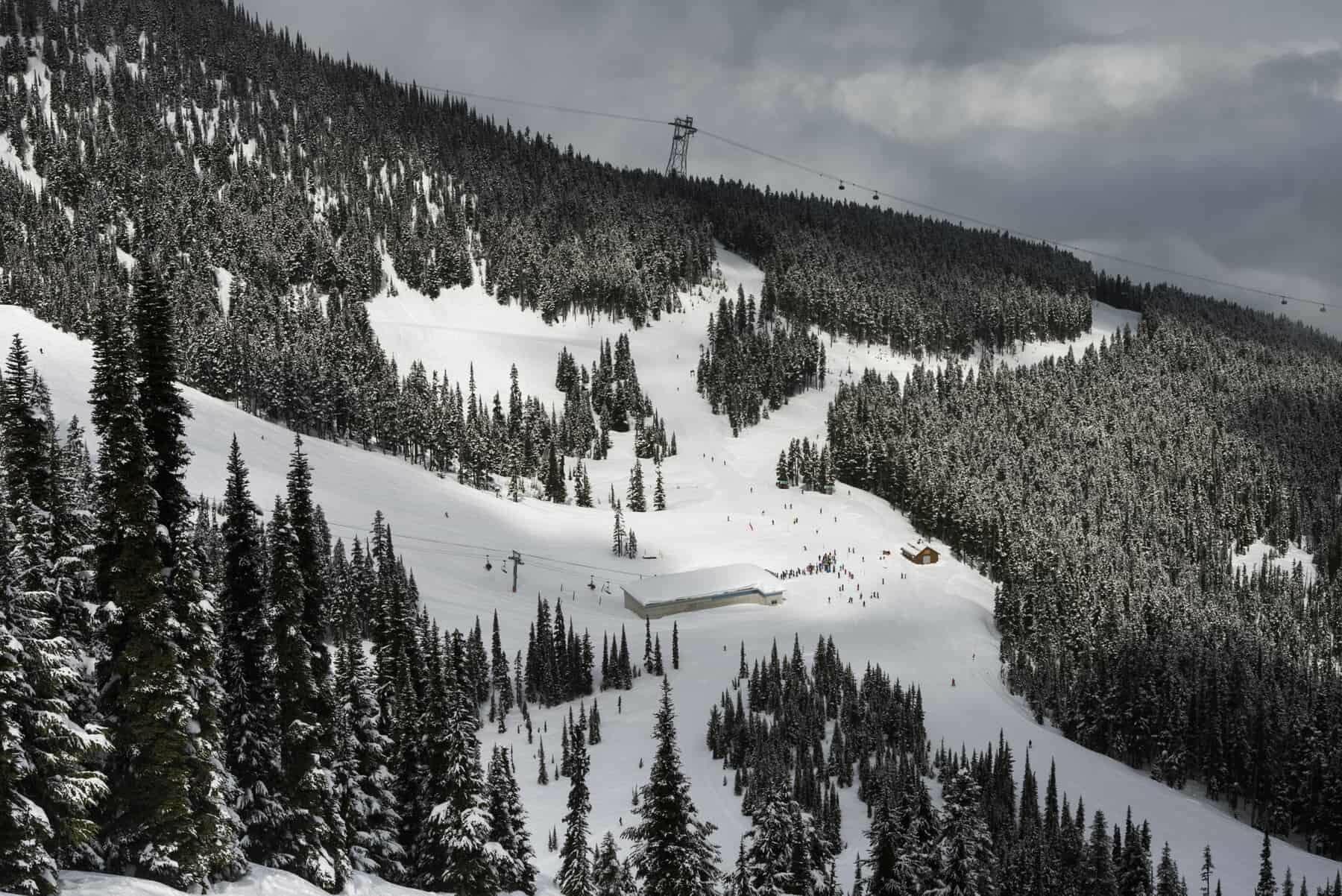 Naturskøn udsigt over skisportssted og træer på bjerget, Whistler, British Columbia, Canada