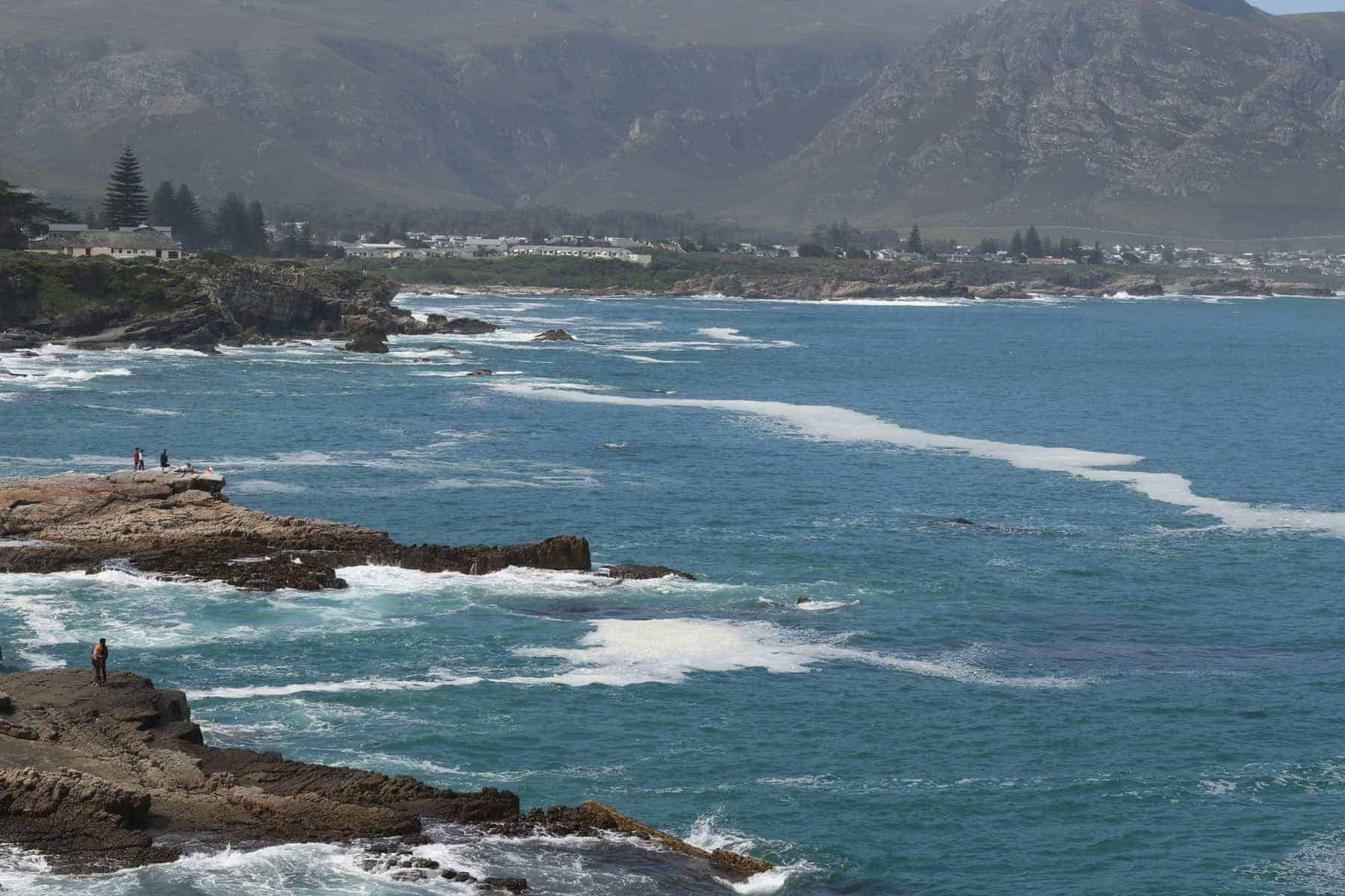 Hermanus on the coast of South Africa is a popular spot to watch the Southern Right Whales from June - November.