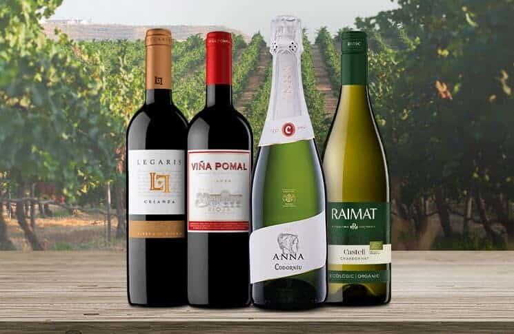 Codorniu, Penedes Spanien, den ældste forretning i Spanien. Codorníu er den næststørste producent af Cava, den spanske traditionelle metode til mousserende vin. Grundlagt i 1551 nær Barcelona, Spanien, det er det ældste firma i landet og et af de ældste vingårde i hele verden.