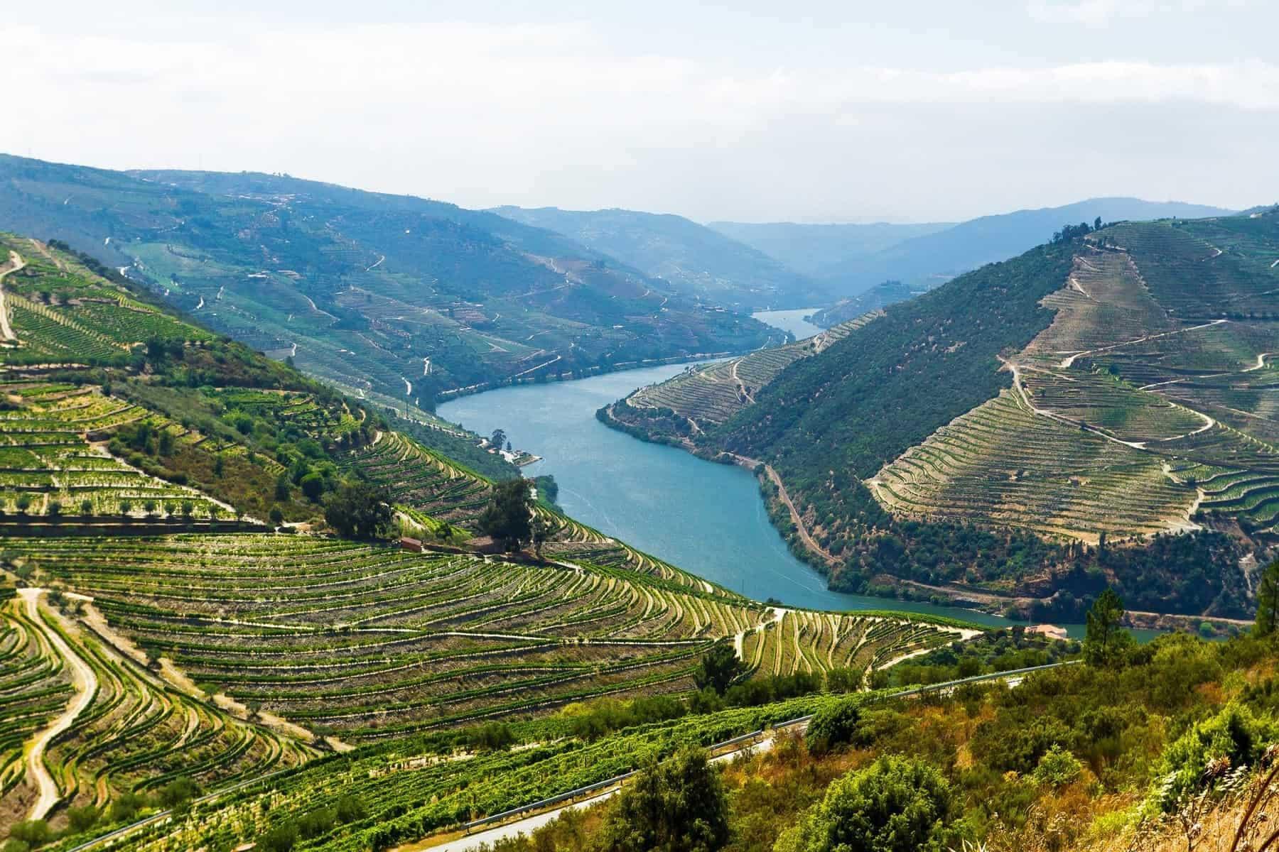 Vineyards along Rio Douro