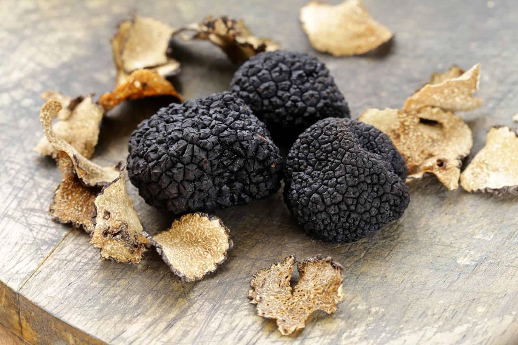 Expensive rare black truffle mushroom - gourmet vegetable