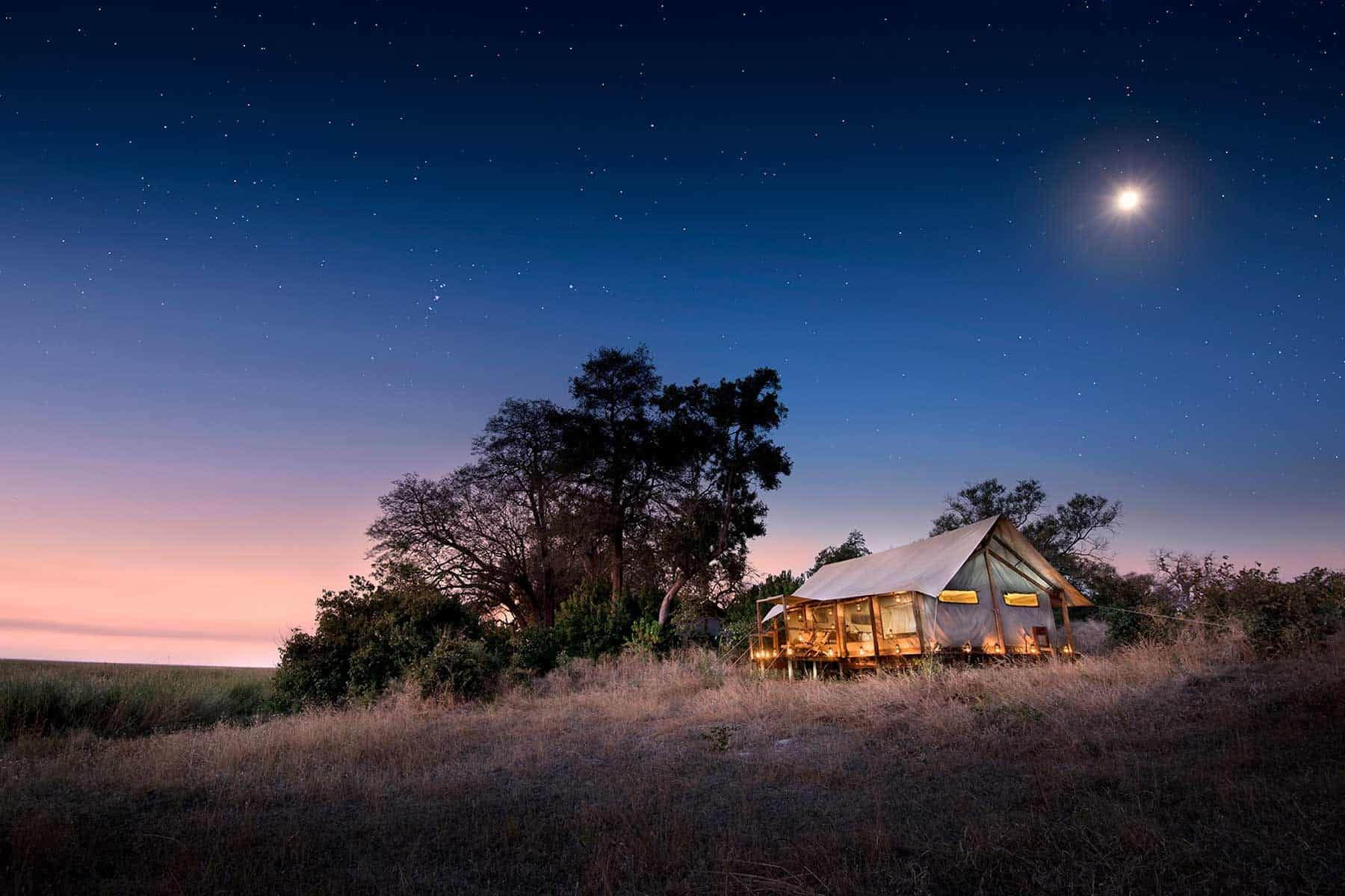 Luxury travel. Safari Luxury buy out